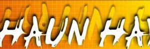 Shaun Hays Temporary Website and Permanent Blog