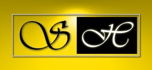 Shaun Hays Presentations Logo
